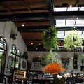 写真:カフェ レストラン ドゥンケルプント