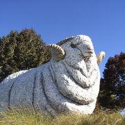 羊がメインだけど・・・ アルパカにメロメロ☆