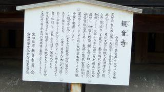 昆虫観察へ観音寺に行ってきました