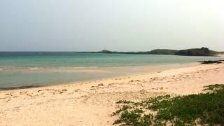 自然のビーチそのもの
