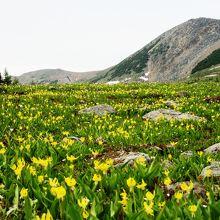 バンフ国立公園