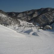 広く滑りやすいスキー場!!