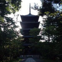 朝の静かな仁和寺を宿泊者だけが味わえます