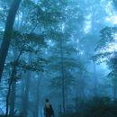 白神の森 遊山道
