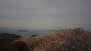 島と海の見えるお花見スポット