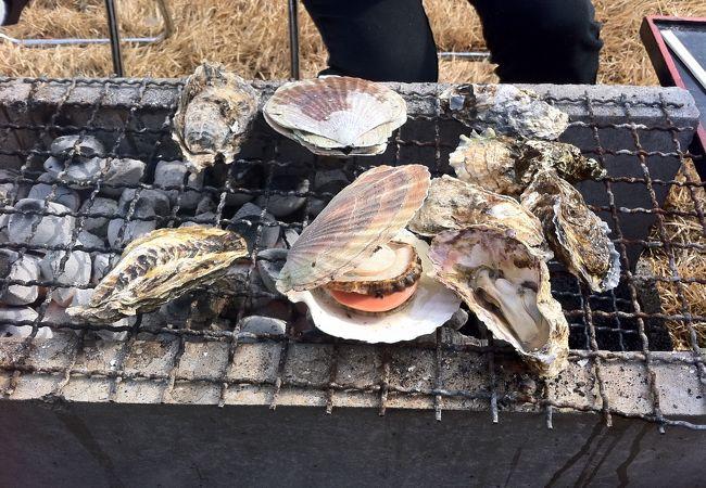 松島かき祭りは宮城県民の冬の楽しみの一つです