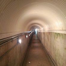 エレベータを降りるとトンネルです。