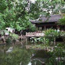 池と建物の調和が美しい
