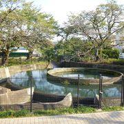 国の有形文化財の水利施設