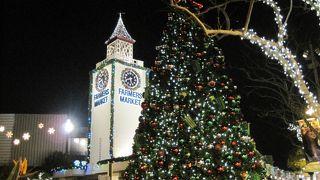 クリスマスシーズンは特におすすめ!