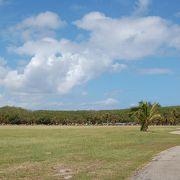 広い芝生と海風が心地良い!