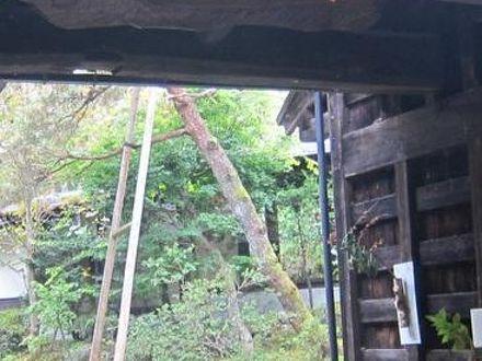 いろりの宿 かつら木の郷 写真