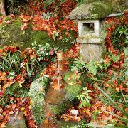 強羅公園内の茶苑。紅葉がキレイでした。