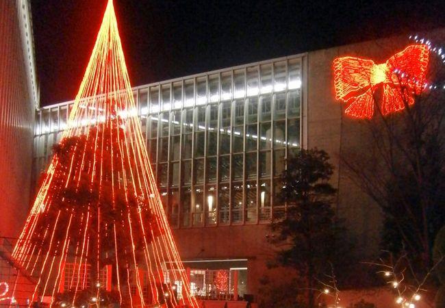 クリスマスフラワーショー/光と花のページェント