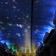 トンネルに入ると、列車の天井いっぱいに、星座や花が映し出される演出