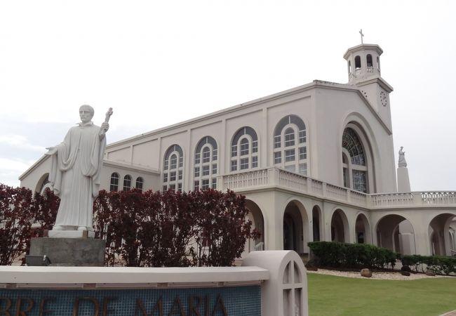 南国の大聖堂