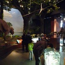 ミュージアムパーク茨城県自然博物館