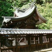 紅葉の名所となっている京都府京田辺市の酒屋神社(さけやじんじゃ)
