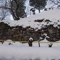 写真:亀ヶ城跡