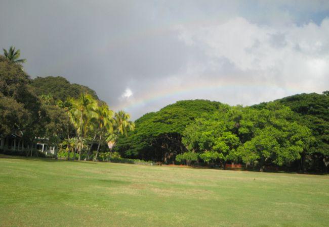 虹も毎回見ています。