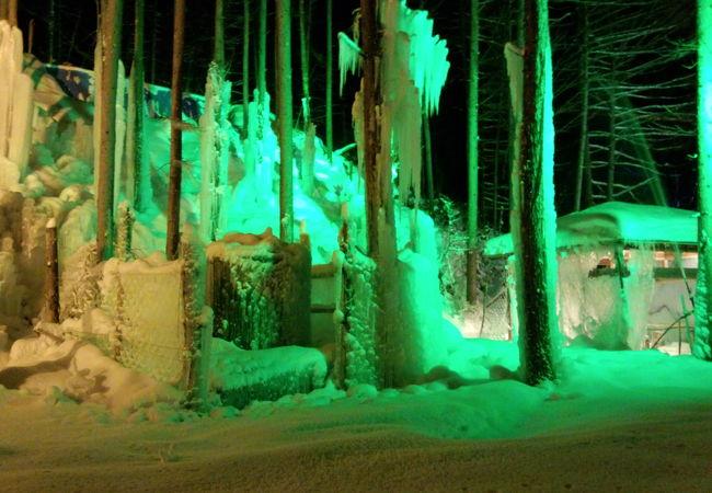 氷点下の森