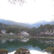 桜とアルプスの山が池に映ってきれい!