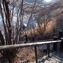 階段を降りるともっと近くで見る事が出来ます。