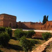 古の王宮も、今はコウノトリの巣としてリユース