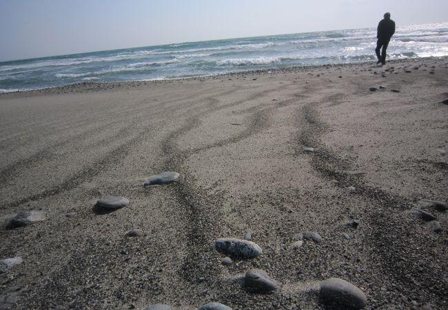 風が強く砂がさらさらなので砂紋って云うんですかね?