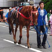 大阪の中心のお祭り
