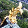 写真:大阪城