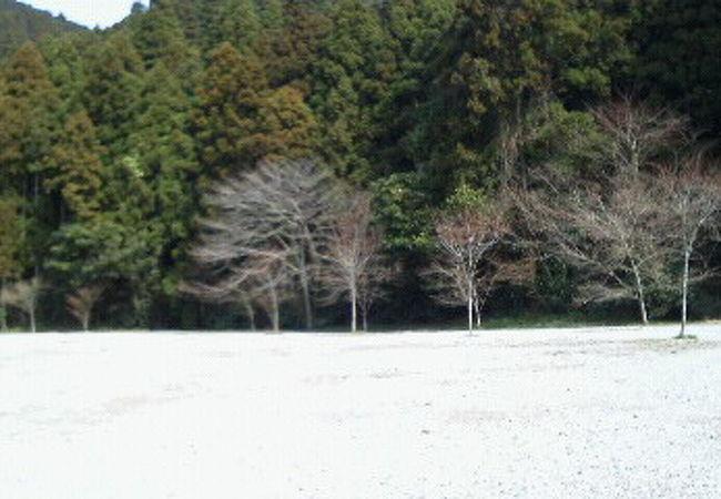 若杉楽園キャンプ場