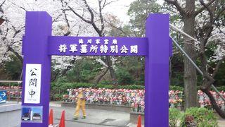 徳川将軍の墓 年に数回公開されています