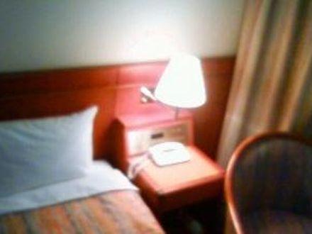 ホテルコムズ大田市場 写真