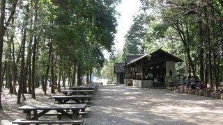 大和市泉の森ふれあいキャンプ場
