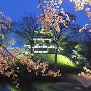 日本三大夜桜です。