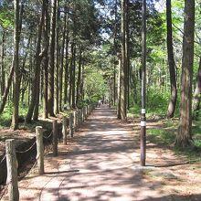 相模原中央緑地のなかの遊歩道の脇あり、相模原市登録有形文化財です。