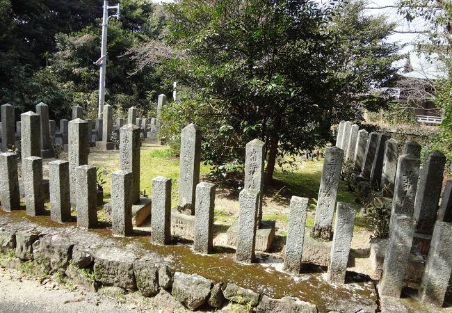 八田山公園