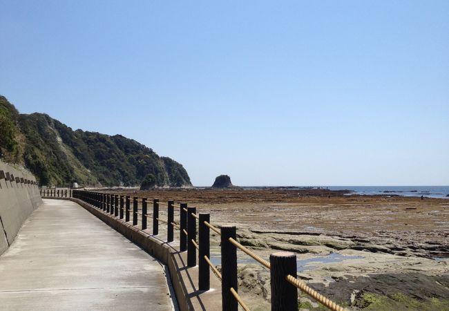 鯛の浦をぐるっと散歩