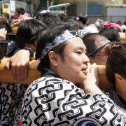 四年ぶりの神田祭りに大興奮
