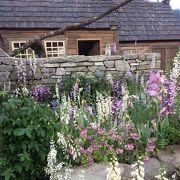 ターシャのお庭がすばらしかったガーデニングショウ