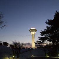 五稜郭タワー 写真
