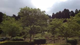 乙女森林公園第二キャンプ場