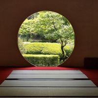 明月院(あじさい寺) 写真