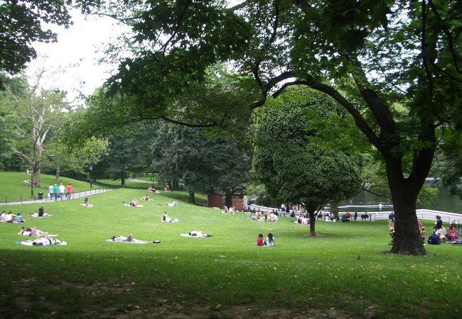 芝生でくつろぐ人たち