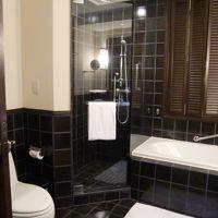 シャワーブースは浴槽の隣に