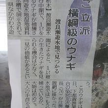 新聞にも載りました