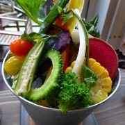 島野菜を堪能