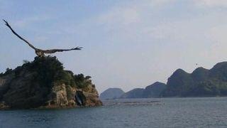 日南海中公園