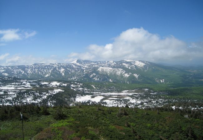 八甲田山が美しいです。